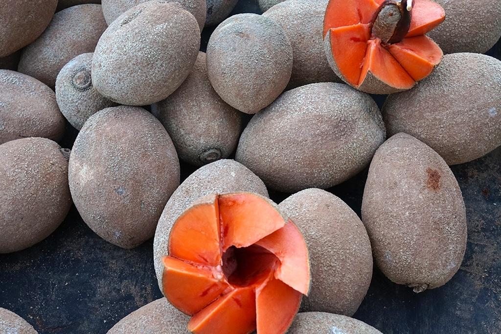 mamay fruit