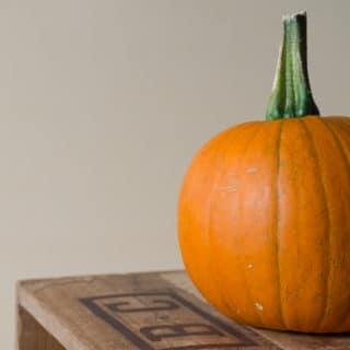 23+ Pumpkin Recipes to Fuel Your Pumpkin Obsession