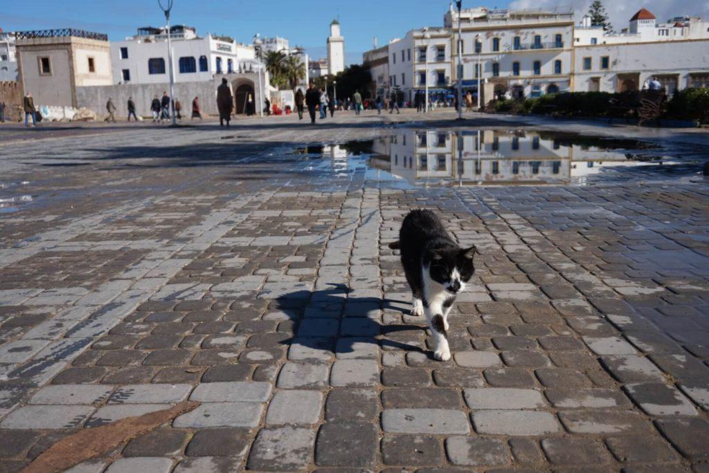 Essaouira, Main Square