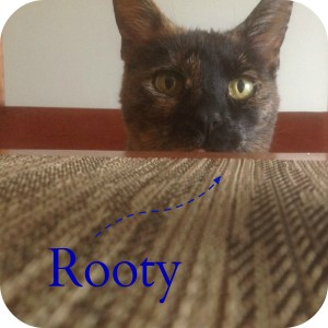Rooty2