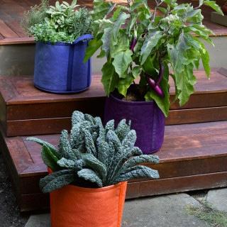 make more garden space with grow bags!