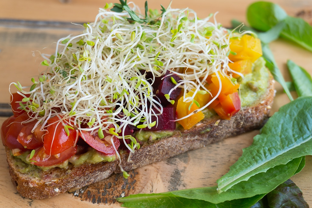 Healthy Avocado Toast with sprouts on top