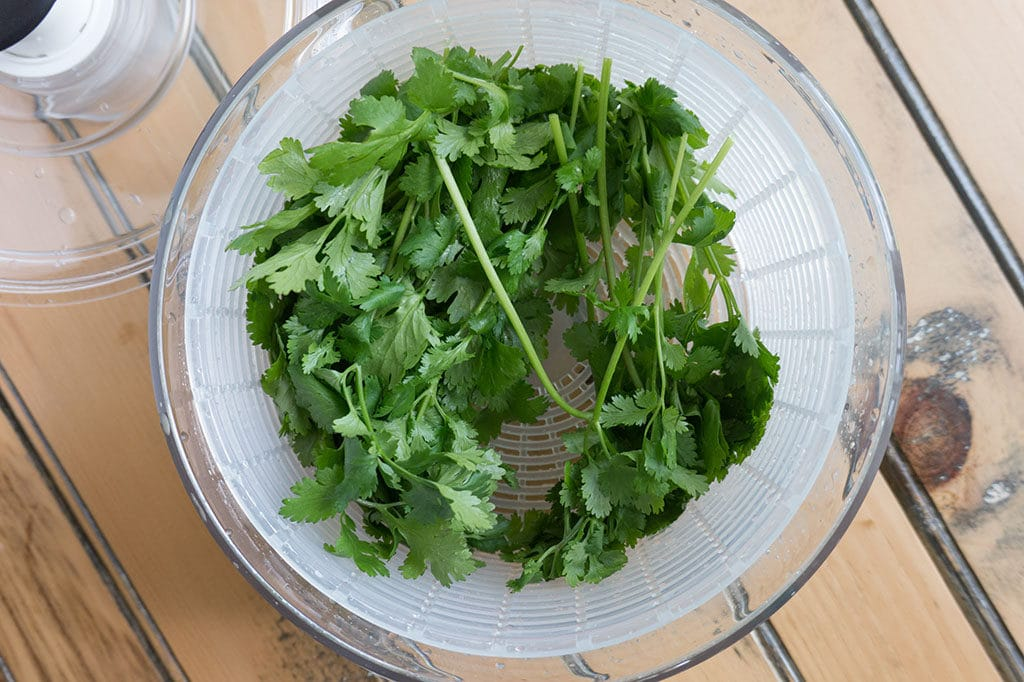 cilantro in salad spinner