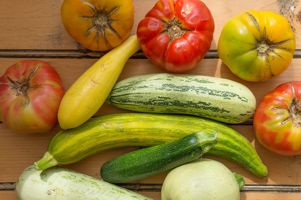 Zucchini and Tomatoes
