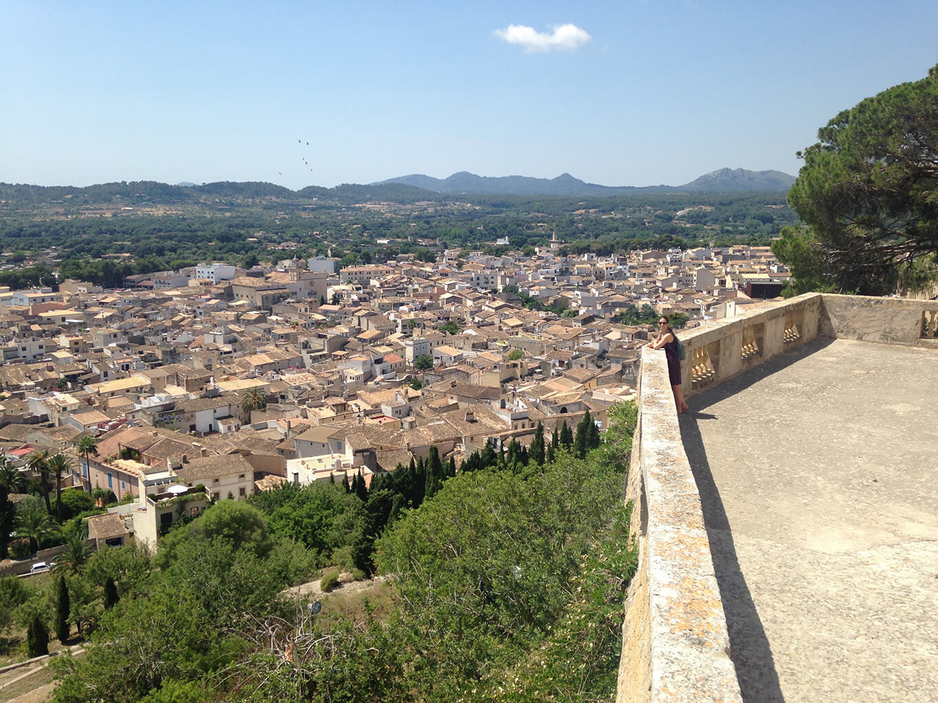 View of the town of Arta