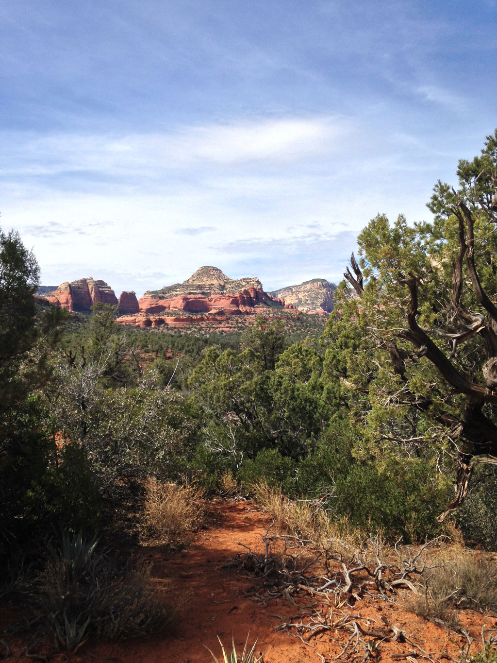 View from Chuckwagon Trail