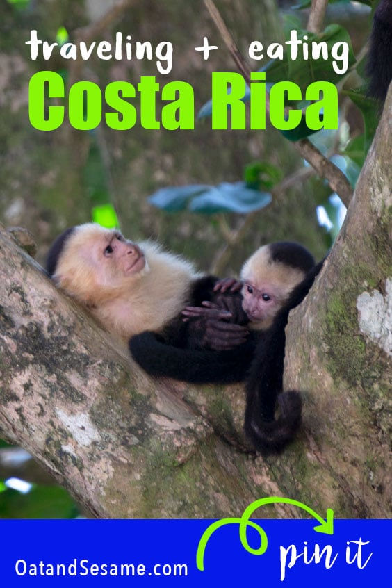 Two weeks in Costa Rica. Highlights included enjoying traditional #casado, jungle trekking, abundant wildlife, beach days, and coffee and cocoa plantations. A guide for all your travel planning! | #Costa Rica | #Hiking | #Beaches | #Travel Post at OatandSesame.com