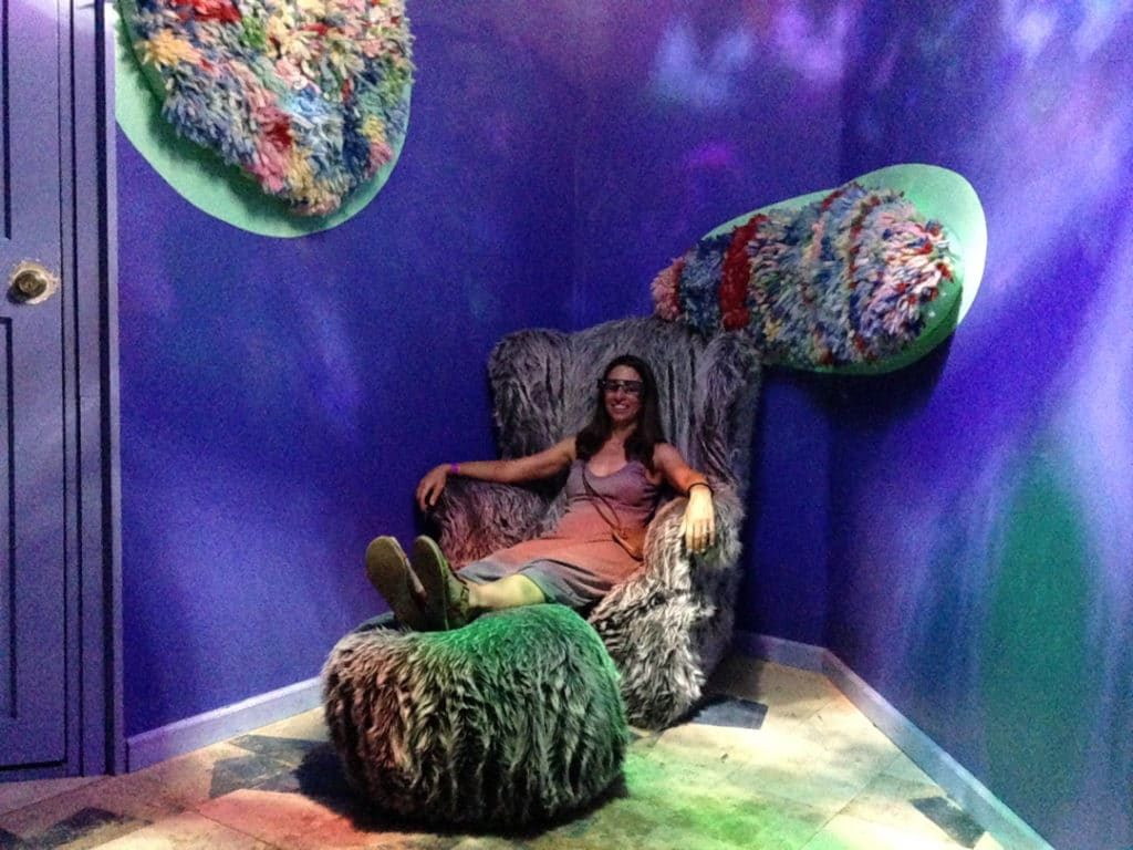 Meow Wolf furry chair