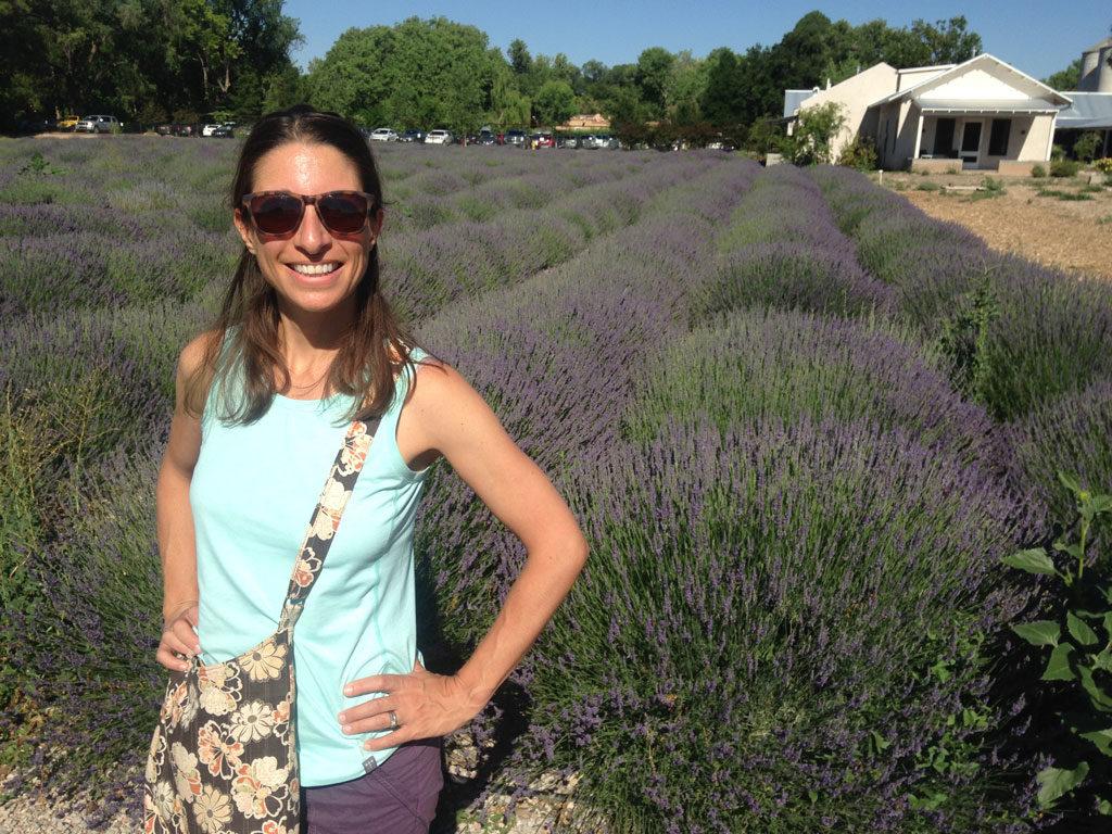 Lavender fields - Los Poblanos