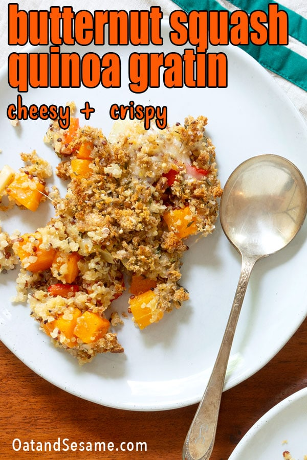 butternut squash with quinoa on plate